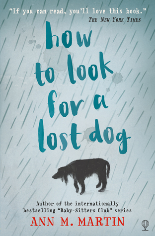 how-to-look-for-a-lost-dog